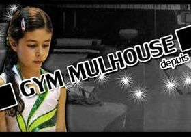 Association des Clubs de Gym de Mulhouse - Miniature